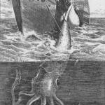 Alecton giant squid 1861 SPURCE PUBLIC DOMAIN