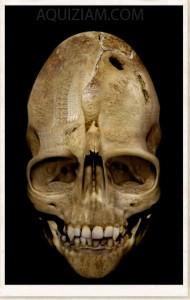weird-skull SOURCE Aquiziam.com