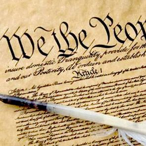 295_constitution