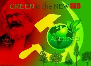 dd395-Agenda  21 Credit David Dees