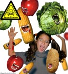 dd395-GM Corn CREDIT David Dees
