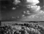 Storm_at_Shark_River_in_Everglades 1966 Photo Charles Barron State Library and Archives of Florida